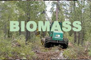 S&R-biomass