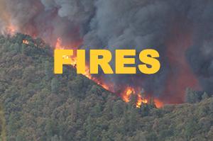 WFLC Post Fire Study