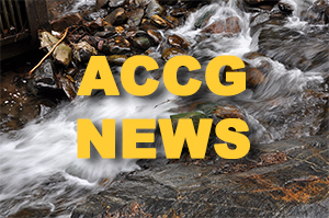 accg-news