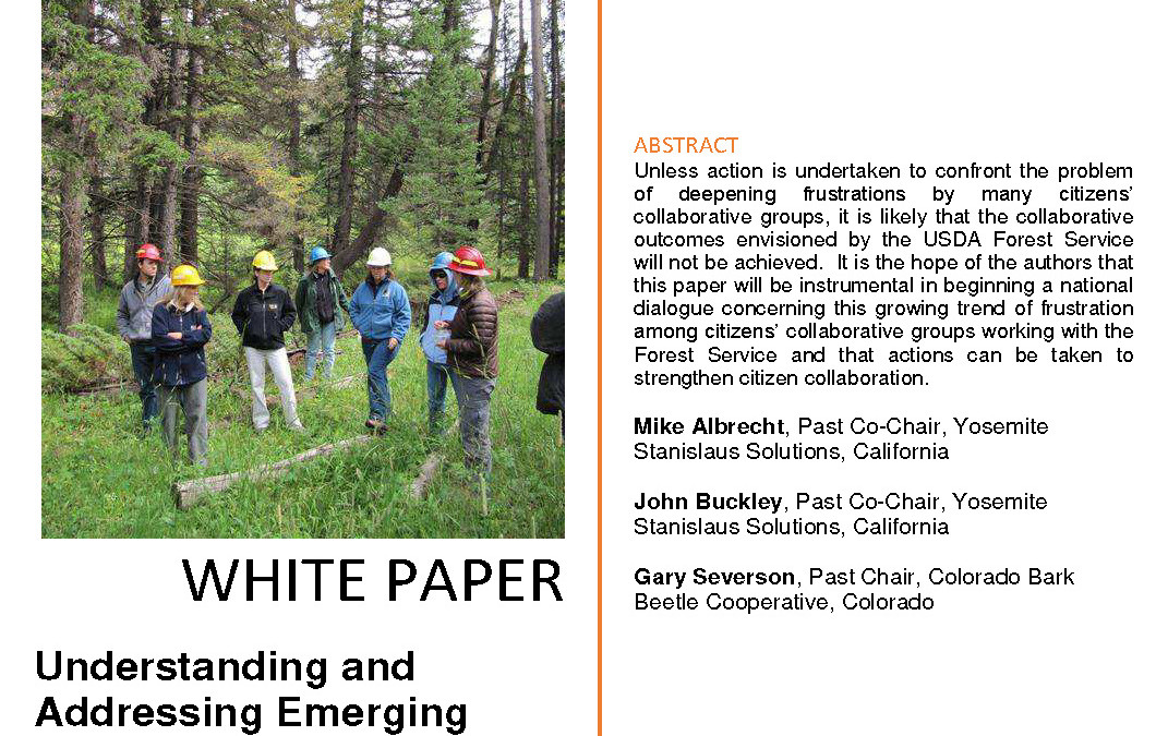 Understanding and Addressing Emerging Frustration Among Citizens' Collaborative Groups Interacting with the USDA Forest Service