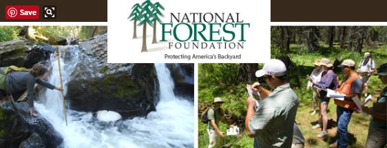 National Forest Foundation Grant Opportunity