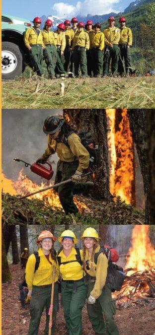 USDA Apprentice Wildland Firefighter Program