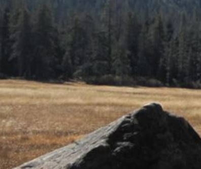 Alpine Biomass Committee (ABC) Meeting Summaries