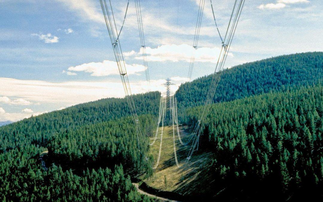 PG&E Transmission Line Herbicide Maintenance Project